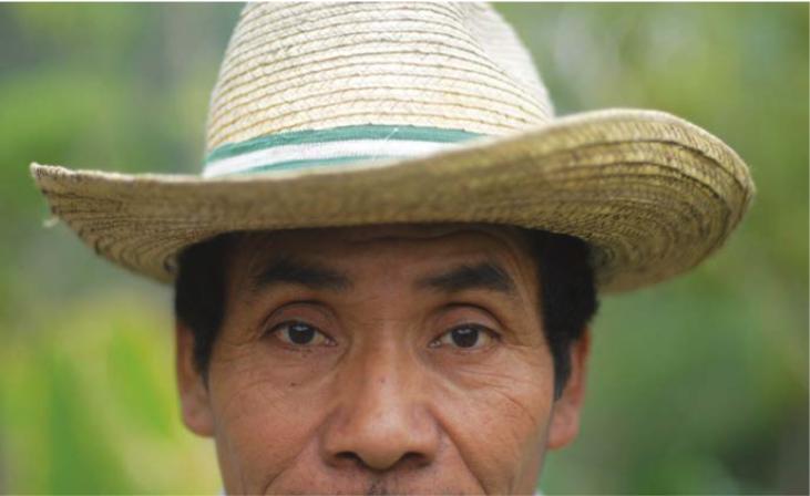 ¿Puede la agroecología sobrevivir sin ser cooptada en el hemisferio norte?