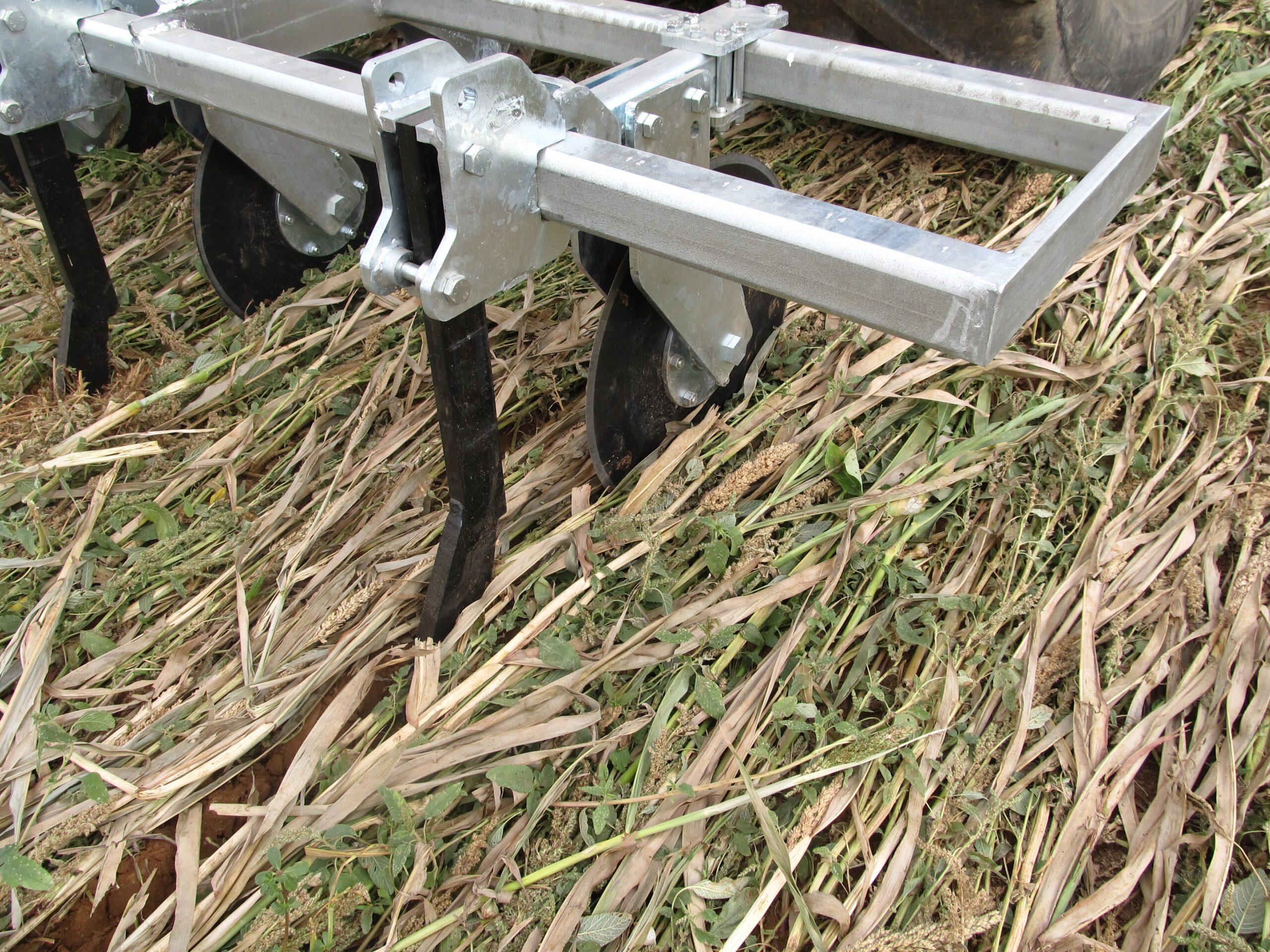Efectividad de la gestión de los cultivos de cobertura mediante el roller crimper en condiciones mediterráneas