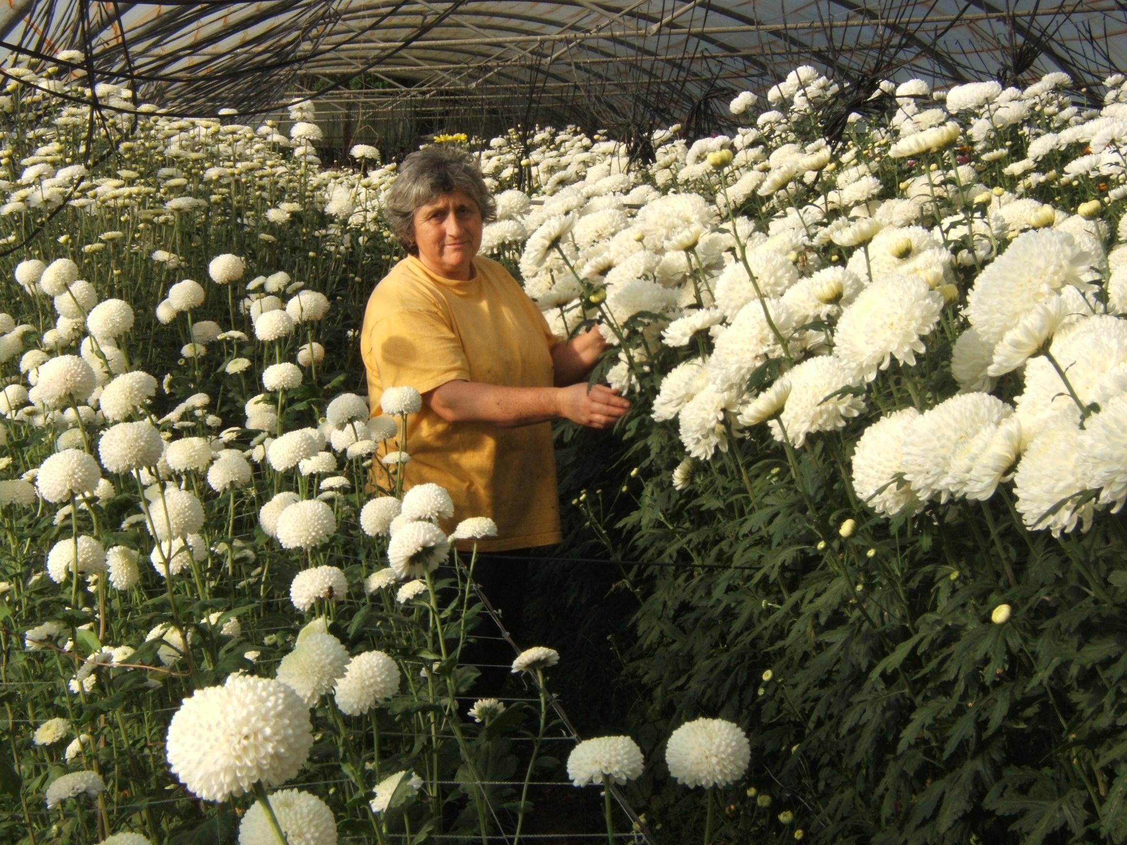 Elia Rodríguez. Agricultora ecológica gallega Socia de Honor de SEAE