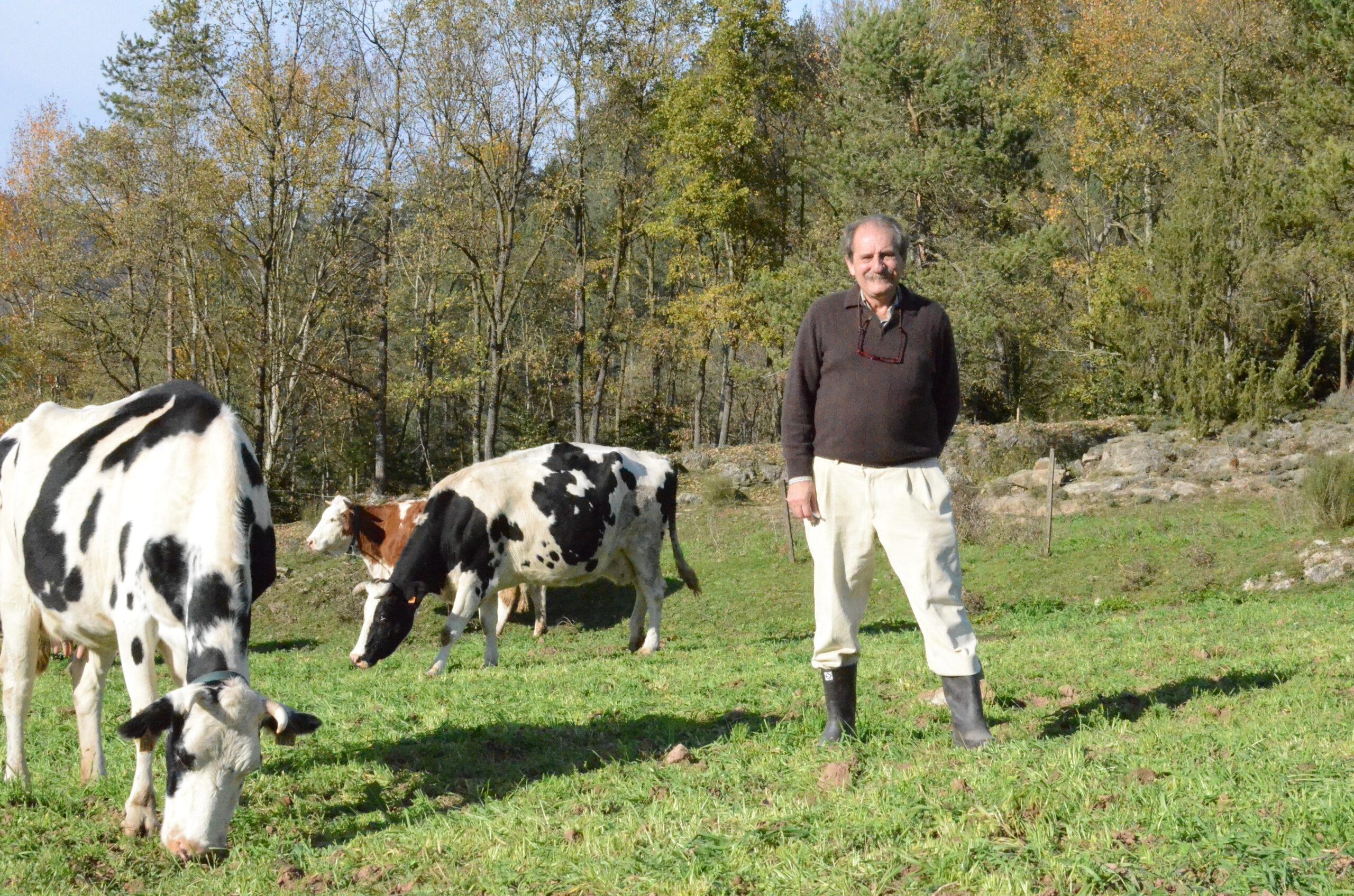 Las leguminosas en la alimentación de la ganadería ecológica