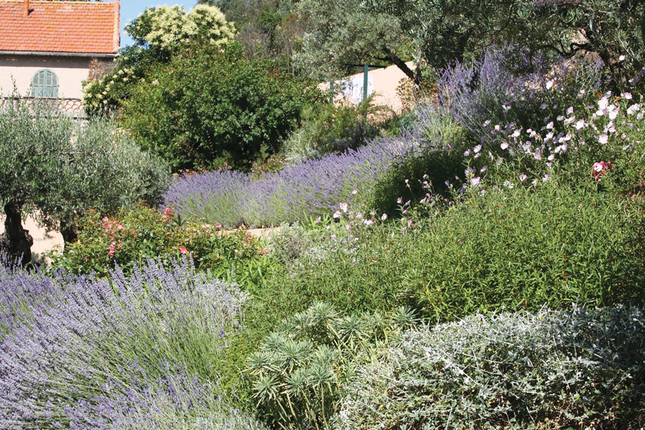 El jardín profundo: ahondando en nuestra ignorancia