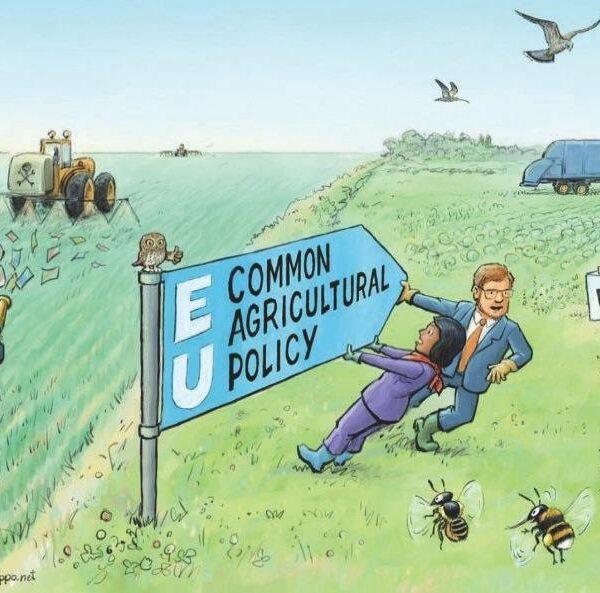 Por una nueva Política Agraria Común totalmente alineada con el Pacto Verde Europeo