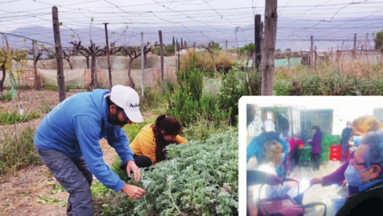 La agroecología como estrategia  para recuperar población en Almócita